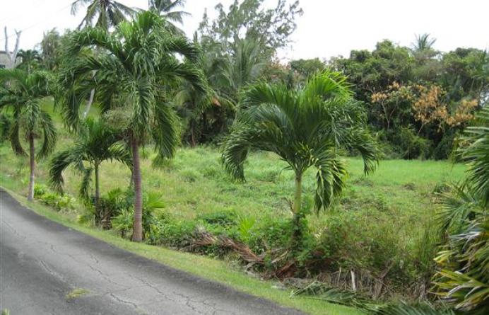 Moncrieffe Plantation