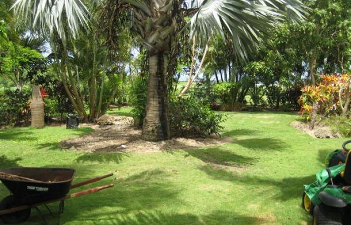 South Ridge, Barbados