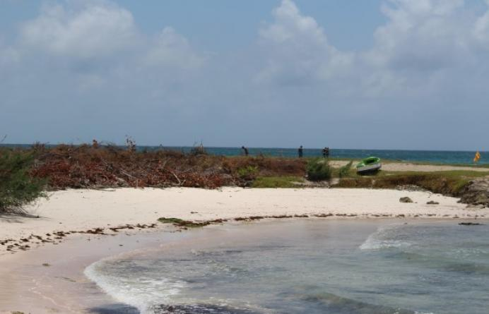Inch Marlow, Seascape
